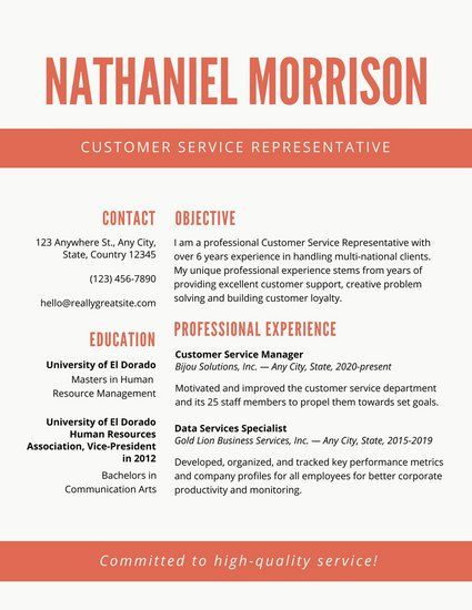 Cele mai bune 25+ de idei despre Customer service resume pe - customer service on a resume