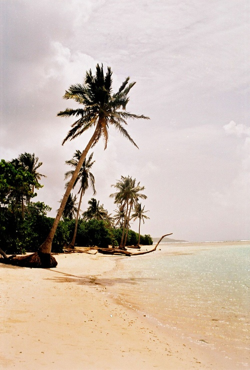 #Guadeloupe