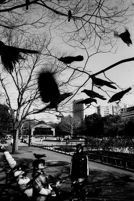 Tokyo 1999 trent parke · photography aestheticpark photographymonochrome photographyblack white