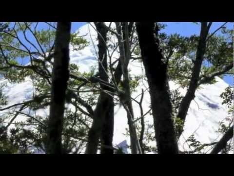 #saltosdepetrohue #waterfalls #chile #petrohue #surdechile #patagonien #patagonia #travel #southamerica #trekking #nationalparks #routes #sights #spots #southchile #südchile