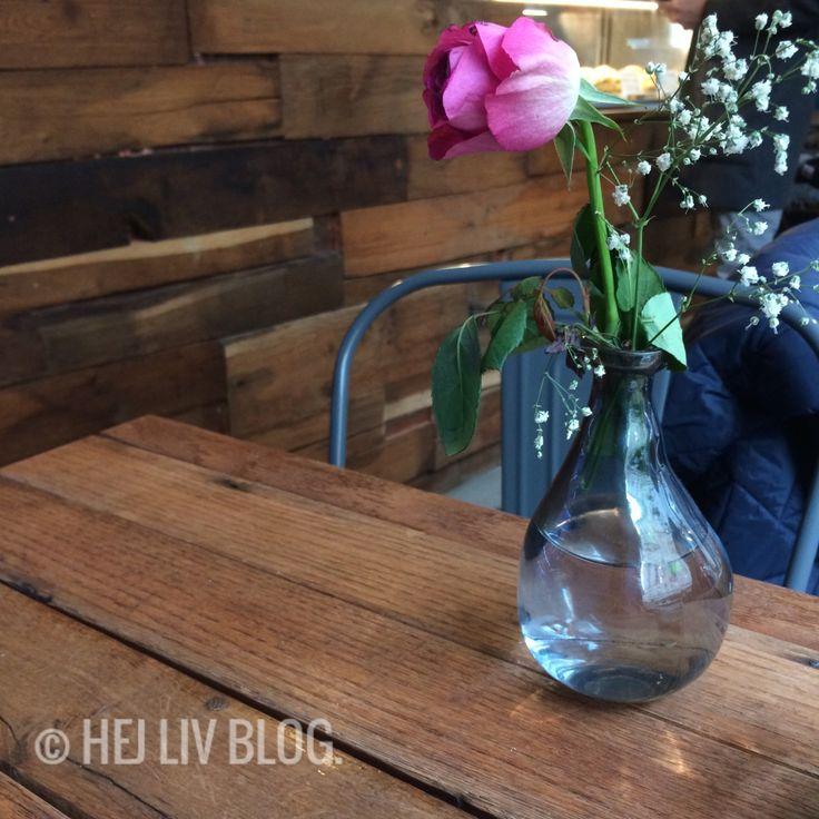 Belgisches Viertel/ Köln. – Von einer Freundin erhielt ich den Tipp, einen von ihr neu entdeckten Blumenladen aufzusuchen. Dieser befindet sich im Belgischen Viertel/ Köln. Da ich dort noch n…