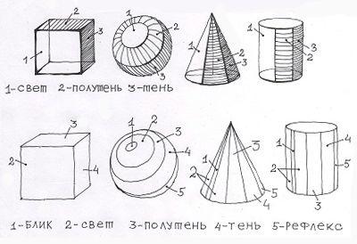 Как ставить освещение для натуры- Основы рисунка- Как научиться рисовать