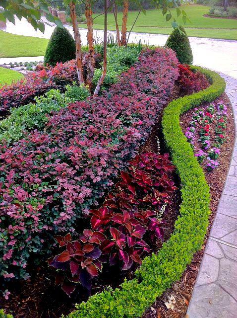 seasonal plants add punch of