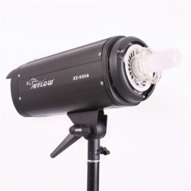 [20061] Hylow 600w Studio Light (Strobe and Modeling lamp)