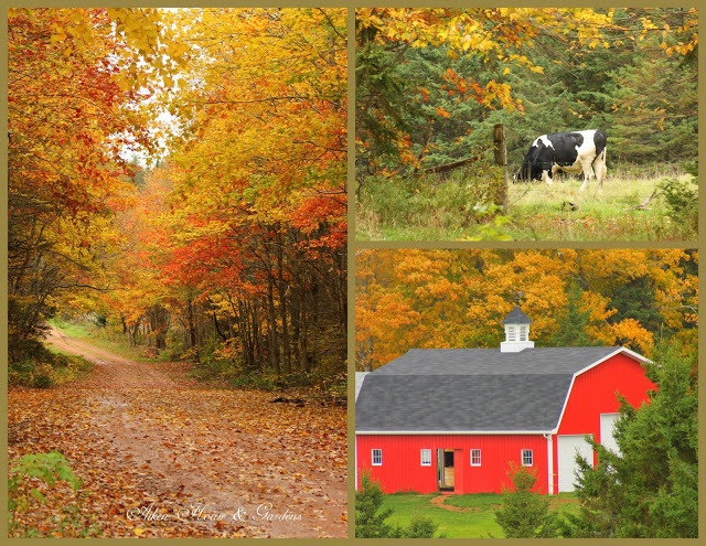 Autumn on Prince Edward Island