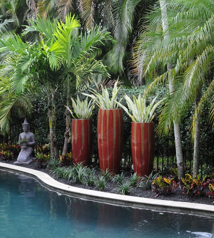 South Florida Tropical Landscape Ideas Planter Container: 702 Best Images About #Container #Gardening Ideas On