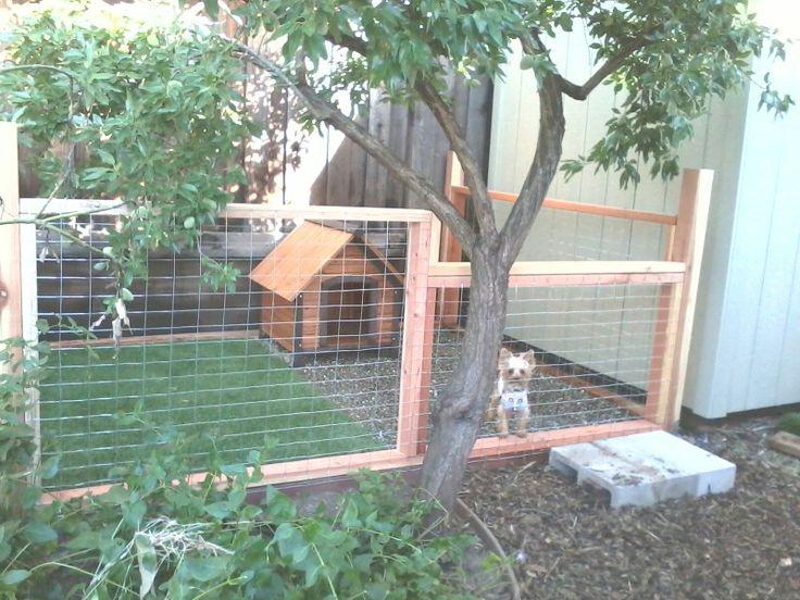 Pinot's dog run | Backyard dog area