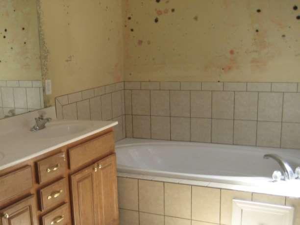 Καθάρισε με φυσικό τρόπο τους μύκητες και τη μούχλα στο μπάνιο… Καθαρισμός της κουρτίνας μπάνιου Αφαίρεσε τη κουρτίνα μπάνιου. Τοποθέτησε μερικές πετσέτες μπάνιου μέσα στο πλυντήριο ρούχων. Τοποθέτησε τη στεγνή κουρτίνα μπάνιου μέσα στο πλυντήριο πάνω στις πετσέτες. Πρόσθεσε ακόμα μερικές πετσέτες, θα βοηθήσουν στο τρίψιμο της κουρτίνας κατά τη διάρκεια του κύκλου πλύσης. Χρησιμοποίησε …