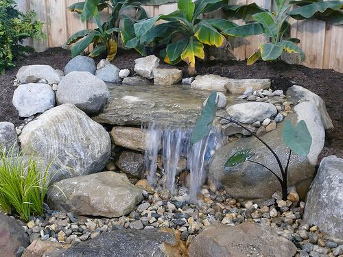 Solar Powered Water Fountains Water Gardens Pinterest
