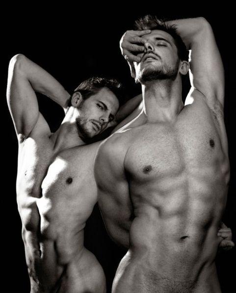 gay breeding bareback