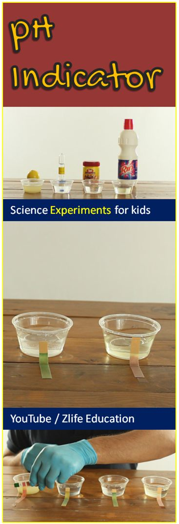 chemistry experiment instructions Amazoncom: playz stem a+ kids chemistry junior experiments & reactions   the detailed easy-to-follow instruction guide, learning about chemical reactions,.