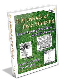 Shaping trees