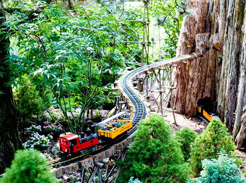 See A One Of A Kind Model In The Botanic Garden, Glencoe.