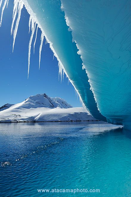 Melting iceberg in Antarctica. Photo: Gerhard Hüdepohl
