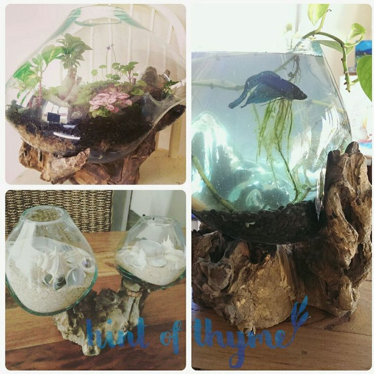 Some inspiration ideas on what you can do with your gorgeous blown glass bowl!