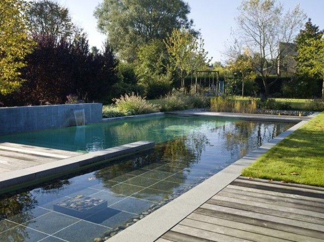 18 best images about piscine on Pinterest Decks, Natural pond and