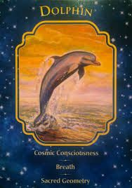 """Today's Angel Card Message  Message from Dolphin:  Dolphin: """"Cosmic Consciousness, Breath, Sacred Geometry.""""  The dolphin card is reminding you to breathe. Connect with your breath regularly throughout the day. Breath work will help you align, centre, and expand your awareness. It will relieve stress and keep you focused.  Read more: http://www.online-tarot-readings-by-amber.info/angel.html"""
