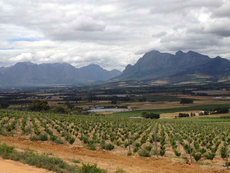 Fairview Vineyards, Paarl, South Africa