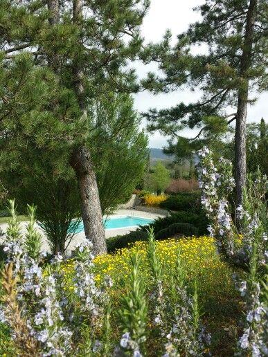 Spring!!!! #holiday #weddingintuscany #casarnaitalia #destinationwedding #loveintuscany Kellenlauxen@gmail.com