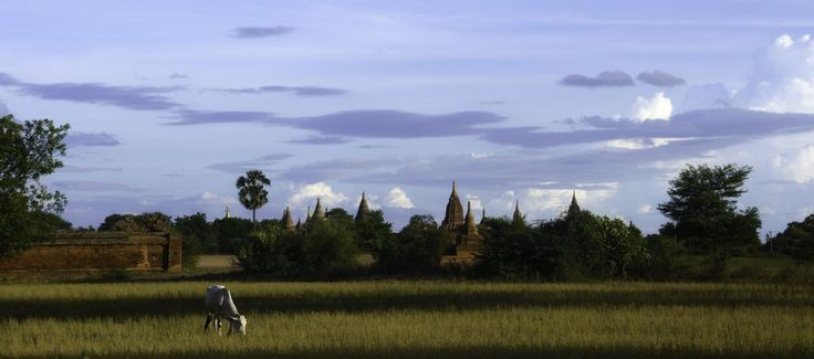 TONY'S TOURS - MYANMAR - PAGAN - TEMPLE