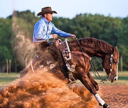 Horse - Clinton Anderson