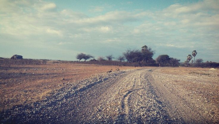 a beautiful long road , kolbano, east nusa tenggara