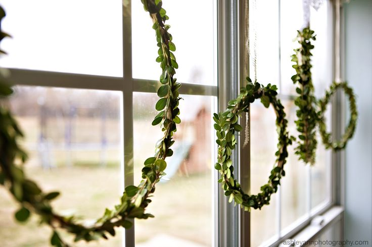 simple diy wreaths--Love the look of multiple in a big window. Breakfast room, front windows