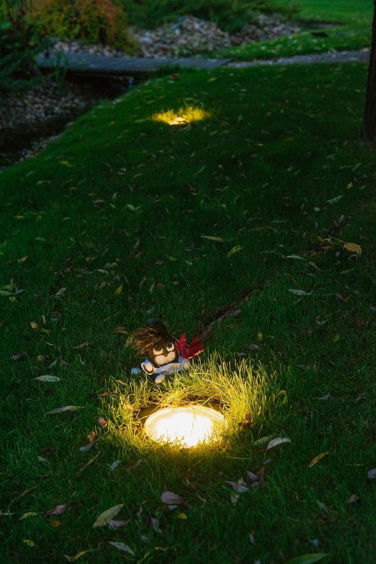 Our lucky charm cat Lighty in charge of positioning recessed garden lights :-) Lighting design by Belisama Lighting and the lighting designer Kamil Akhmedov.