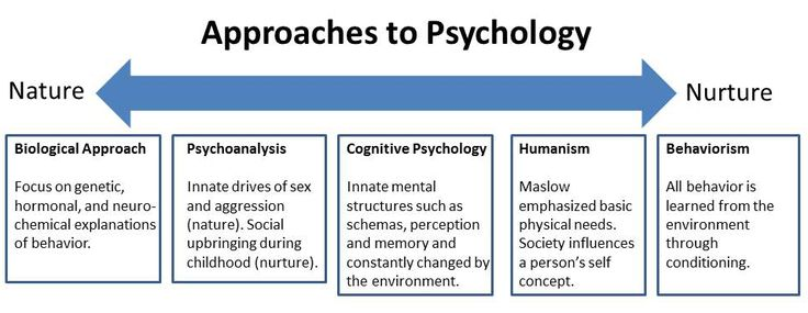 Nature Vs Nurture Abnormal Psychology