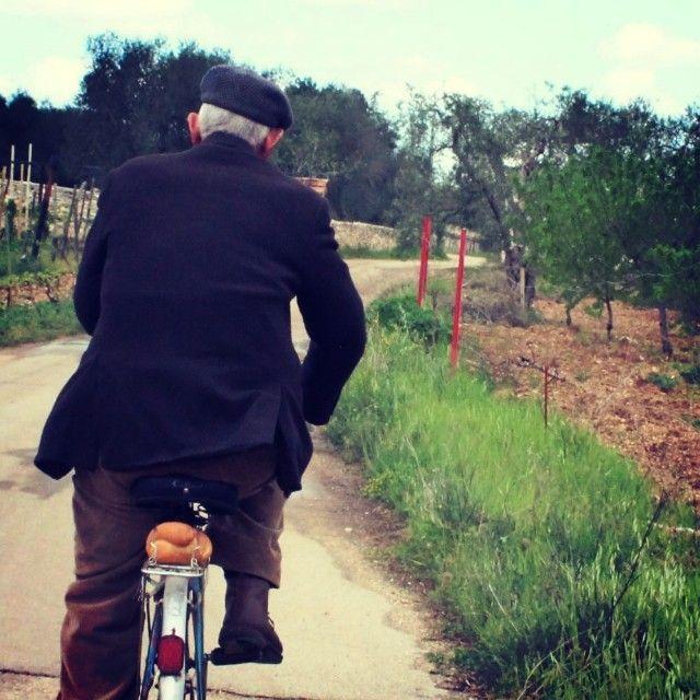 .@Giovanni Caputo | Per le campagne di #sannicandro #bari #puglia #torre #bread #bike #old #vecchio #WeAreInPuglia.