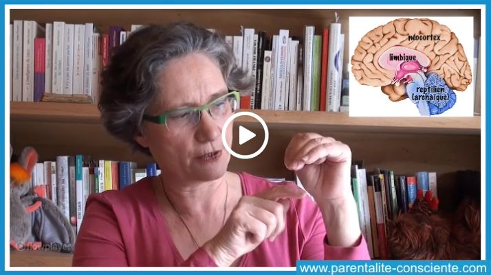 Comment calmer nos réactions excessives et réguler nos émotions… en 7 secondes !
