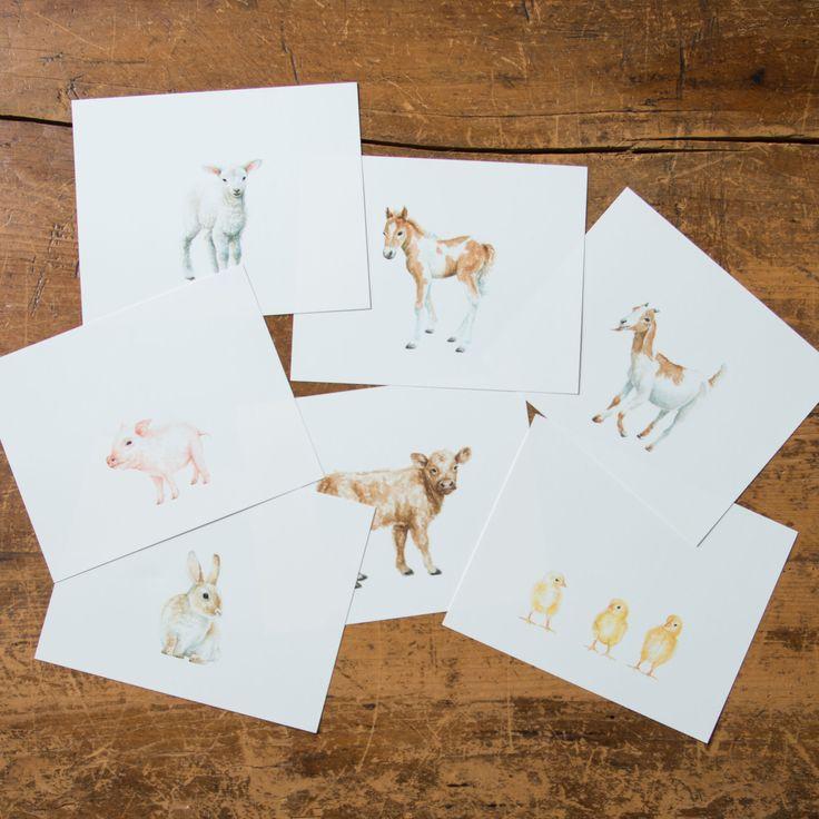 Magnolia Farm Animal Print - Magnolia Market | Chip & Joanna Gaines