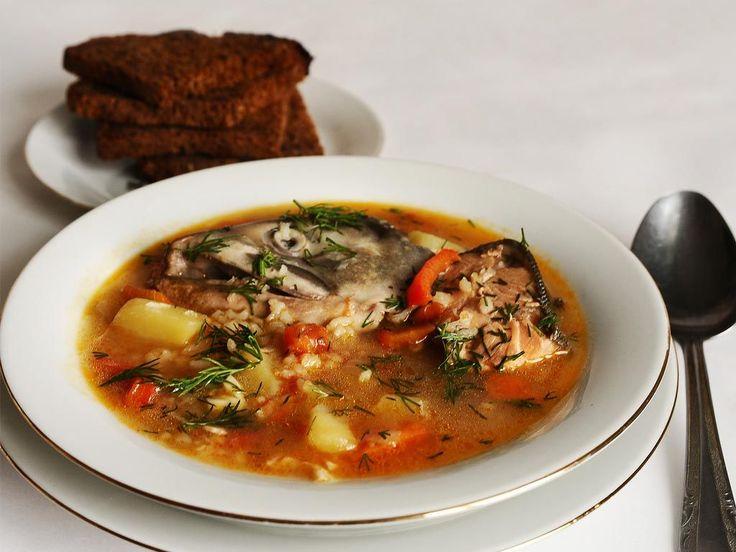 Рыбный суп с рисом / Простые рецепты