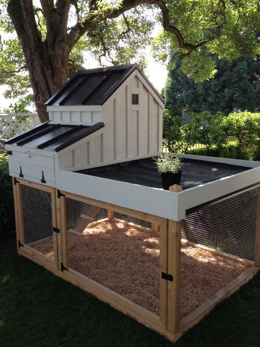 Best 25 portable chicken coop ideas on pinterest for Small chicken coop with run
