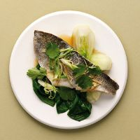 Steamed Seabass With Pak Choi, Salad Onion And Ginger | Recipe