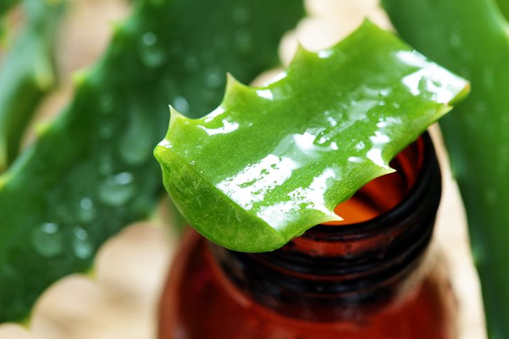 Mannatech is pioneering a new approach to carrier oils by introducing oils specifically formulated to provide Glyconutrients, extracted from aloe vera.