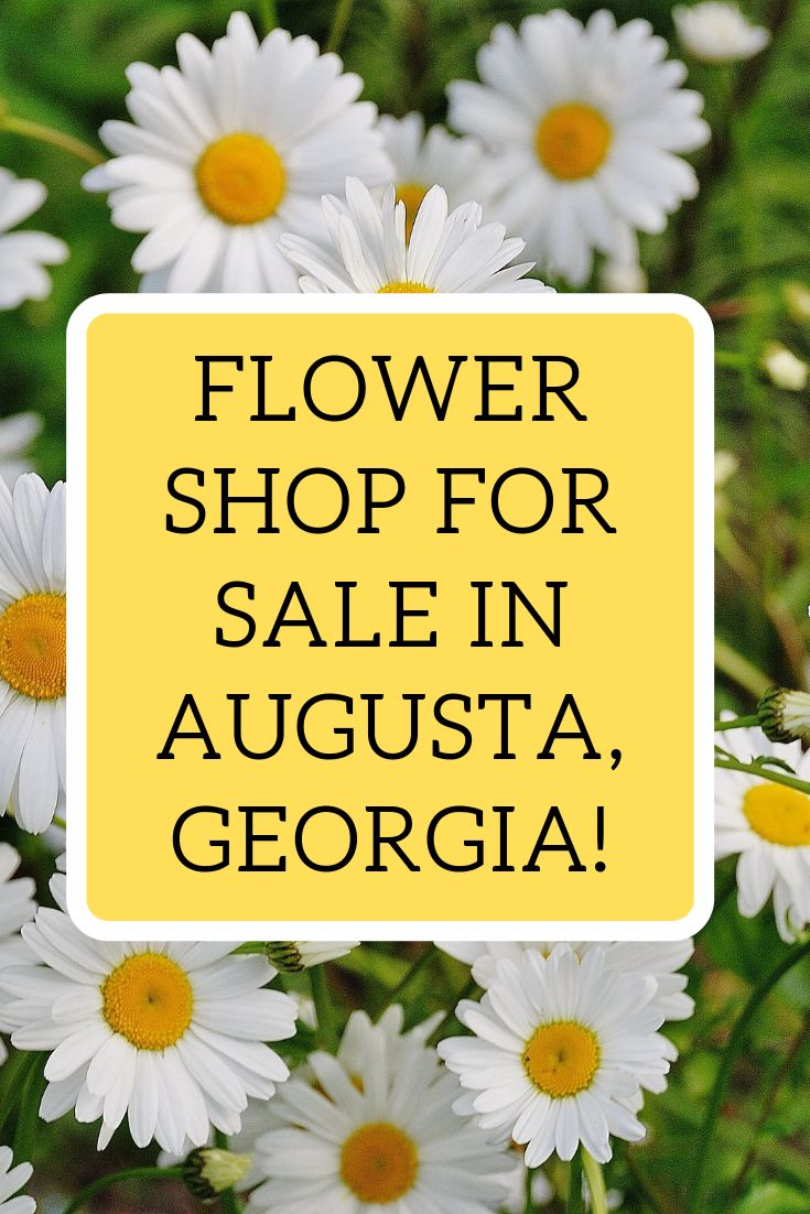Flower shop for sale in augusta in business since