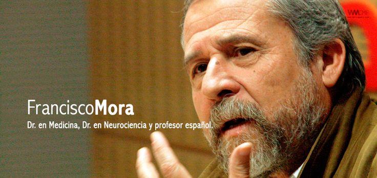 """FRANCISCO MORA: """"UN MAESTRO TRANSFORMA LA FISIOLOGÍA DEL NIÑO"""""""