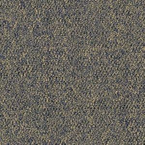 Tuition Prisms 26 Spring - Save 30-60% - Call 866-929-0653 for the Best Prices! Aladdin by Mohawk Commercial Carpet