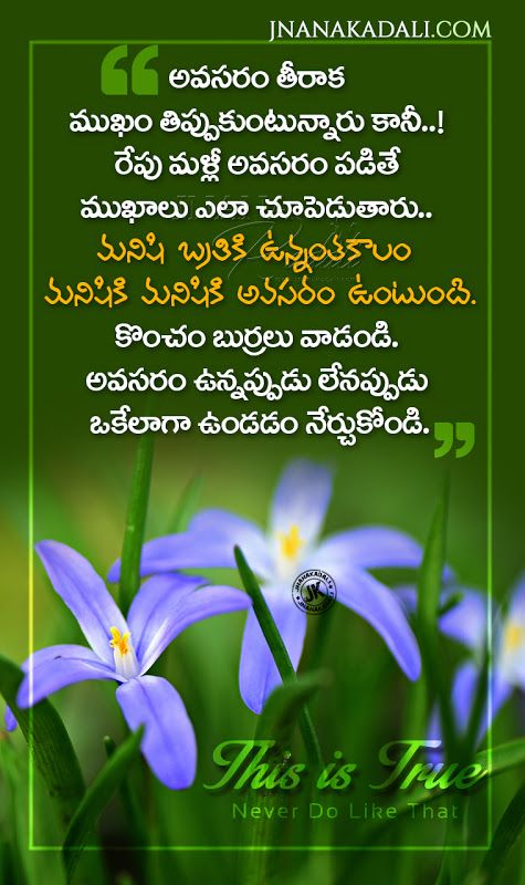 Top Most Telugu Quotes On Life Be Gentle Always Quotes Messages In Telugu Jnana Kadali Co In 2021 Cute Quotes For Life Morning Inspirational Quotes Happy Life Quotes