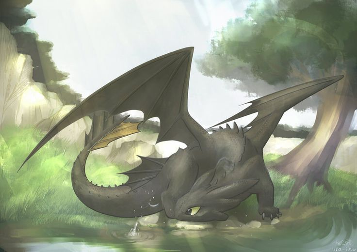 From uta-inu ...    How to train your dragon, toothless, night fury, dragon