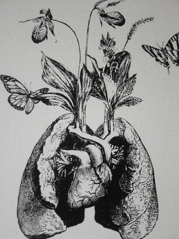 Human lung heart growing wild flowers and orchids ...
