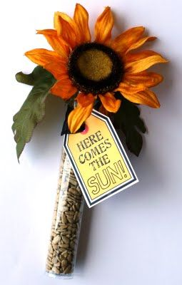 "Tube filled with  sunflower seeds. A fun ""pick me up"" gift for a friend!"