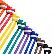 Coloured Belt with White Stripe for Karate and Jiu Jitsu