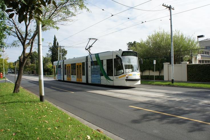 No 16 tram on Balaclava Road, Caulfield North.  (Victor Perton)