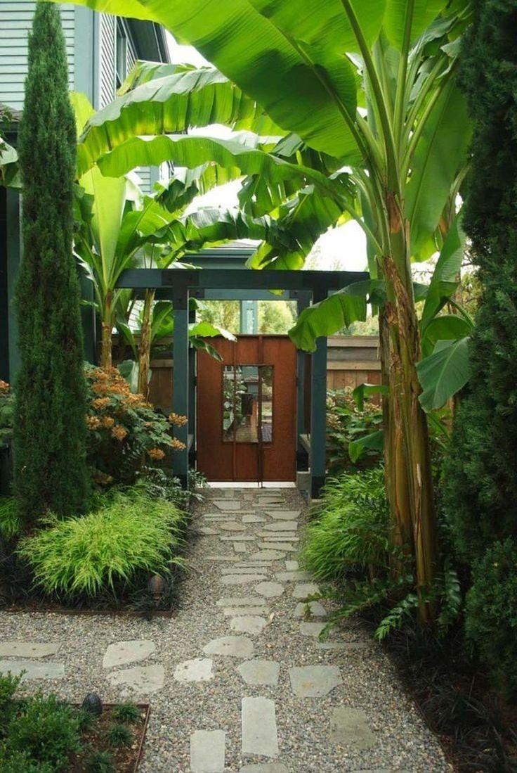 The Best Tropical Backyard Landscaping Ideas On Pinterest - Tropical backyard ideas