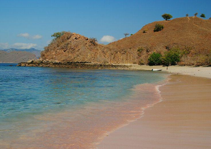 Pink beach - Komodo island #Indonesia (photo by Theo)