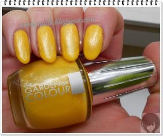 Yellow TGOC