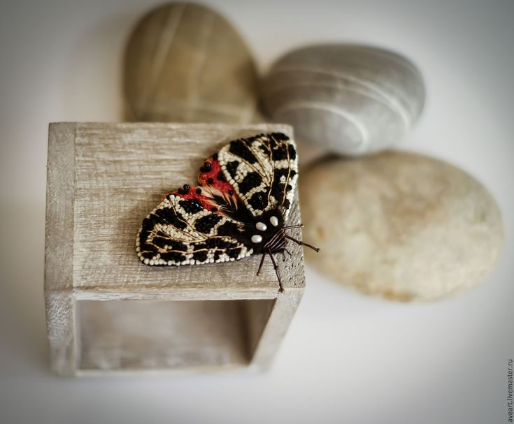 Garden Tiger. Embroidered moth with pearls, crystalls, silk and feathers.