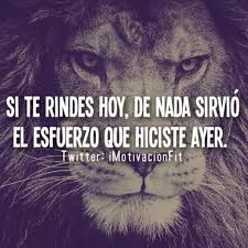 Resultado de imagen para frases de motivacion fitness | Frases y citas especiales | Pinterest | Fitness, Te Amo and Don't Give Up